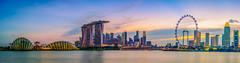 Singapore Skyline and view of skyscrapers on Marina Bay view from the garden by the bay at twilight time. (Nuttawut Uttamaharad) Tags: downtown tree tower river travel view business urban night commercial marina skyline singapore light finance east evening dusk asia building wheel modern famous center reflection architecture city panorama sunset sky bay skyscrapers bridge silhouette hotel financial exterior landscape cityscape