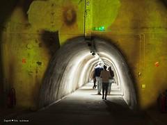 underground-tunnel-floraart_29