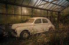 DSC_6134 (Foto-Runner) Tags: urbex lost decay abandonné car auto voitures ancêtres épave