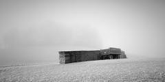 what lies hidden (ArztG.|Photo) Tags: frozen fog hoarfrost winter mood austria atmosphere arztg|photo 21