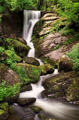 Triberg (asecchi) Tags: triberg waterfall tribergwaterfall cascate landscape paesaggio water longexposure blackforest