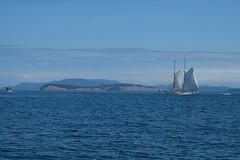 Sailboat, San Juan Islands, WA (nataliekrovetz) Tags: summer sound water sailing sanjuanislands orcasisland sailboat