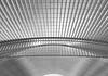 glow (ohank1951) Tags: shadows abstract bw blackandwhite monochrome architecture steel concrete glass lines curves gare station bahnhof calatrava luikguillemins luik lüttich liègeguillemins belgië labelgique belgium canoneos1100d efs1022mmf3545usm