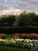 Kolomenskoe (ivan.dolgoff) Tags: olympusepl3 moscow russia park sunset
