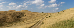 Colline bruciate dal sole (gianKE) Tags: italia wheat landscape field sky nature summer hill farm agriculture countryside path blue tuscany rural country farmland italy scenery grass harvest fields environment meadow scenic spring