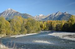 Le Drac, près de Saint-Bonnet (RarOiseau) Tags: rivière hautesalpes montagne automne saariysqualitypictures v2500 ledrac lepiolit lapetiteautane