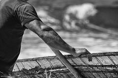 DSC_4362 bw (ahcravo gorim) Tags: xávega torreira portugal mar mãos ahcravo gorim fotografar
