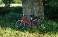 early summer evening light 6 (Amselchen) Tags: bokehpanorama bokeh blur dof depthoffield red green bicycle sony alpha7 sonyilce7 samyang 85mmf14