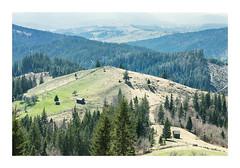 Untitled Image (Florin Aioanei) Tags: nature landscape mountain wild romania florin aioanei