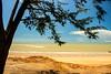 Nightcliff Beach (betadecay2000) Tags: eta beta nightcliff beach darwin northern territory australia strand australien februar 2014 february top end stand baden wasser meer see sea palmen salzwasser meerwasser wolcken clouds outdoor sand ufer landschaft ozean küste himmel wolke