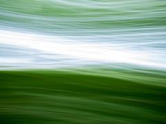 Ceci n'est pas une forêt (Pascal Heymans) Tags: 2590 antwerpen belgië berlaar fotokunst vlaanderen cecinestpasuneforet intuïtief limbo photo photography serie be dmcgf1 pascalheymans