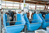 20170531acp135sp039.jpg (ukagriculture) Tags: coldstreamresearchcampus productionagriculture agricultureproducts dairy dairybarn dairycattle farmproduction farmproducts livestock precision precisionag lexington kentucky