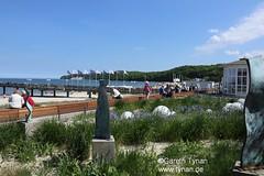 s170522b_3143+_Binz (gareth.tynan) Tags: rügen binz bird rasenderroland prora putbus park sand sea stimmung