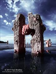 Posts (ScudMonkey) Tags: posts c2017paulbradley whitby beach coast digitalinfrared canon 30d 720nm falsecolour efs1022mmf35 sandsend groyne