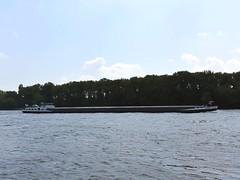Kasbah inland motor freighter (danube9999) Tags: ship vessel freighter cargo kasbah danube bratislava