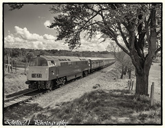 20170518-IMG_7923-Edit (deltic21) Tags: severnvalley severn british brblue britishrail preservation preserved rail railway hydraulic western class canon monochrome maybach class52 1062 d1062