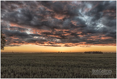Colorful Sunset (BobGeilings.nl) Tags: sunset bobgeilings clouds dramatic farmland field grain holland nieuwvennep orange powerpylon yellow