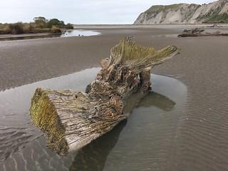 Low Tide Muriwai Beach Hawke's Bay New Zealand