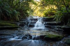 Leura Cascades, color version (Eddy Summers) Tags: leuracascades leura bluemountains tokina28mm waterfall