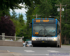 Route 222 Coming for Me... (AvgeekJoe) Tags: communitytransit d5300 dslr nikon nikond5300 route222 bus masstransit masstransportation publictransit publictransportation