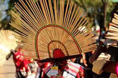 Splendid hat (abrinsky) Tags: india nagaland kohima hornbillfestival hornbill2016