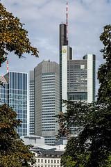Frankfurt Skyscrapers mal im Grünen (Rolf Majewski) Tags: frankfurt hochhäuser mainufer hessen gebäude architektur wolkenkratzer stadt