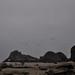 Navarro State Beach, Birds and Gloom