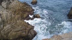 IMG_6147 (cheryl's pix) Tags: california pacificgrove pacificgroveca