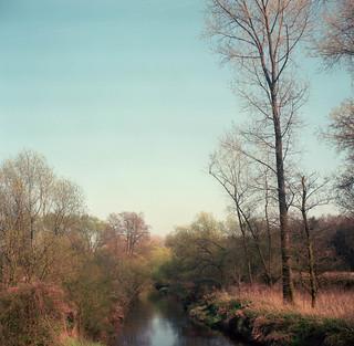 Cold river at spring