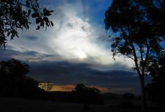 . (LeelooDallas) Tags: western australia bannister landscape sunset sun eucalyptus tree bush sky cloud dana iwachow nikon s9200