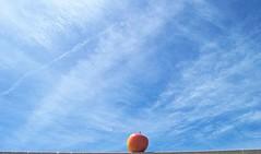 Tempted (Tomás Hornos) Tags: tempted temptation cielo sky azul bleu blue apple manzana rojo imagination d3200