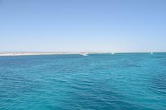 DSC_0217 (russellfenton) Tags: egypt marsaalam nikon nikon7200 7200 corayabeach steigenberger snorkelling sea boat