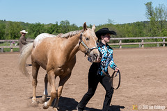 JBC_8290.jpg (Jim Babbage) Tags: krahc annualshow appaloosa horses