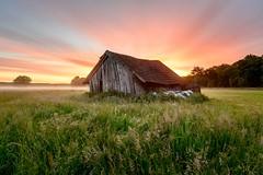 Der Himmel brennt bunt (webpinsel) Tags: brook felder halternamsee landschaft morgendämmerung morgenstimmung natur nebel sommer sonnenaufgang sythen morgens