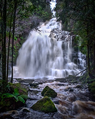 Nelson Falls in full force.jpg (sfowlerphotos) Tags: xt2 landscape waterfall water fuji tasmania nelsonfalls 14mm westcoast australia au