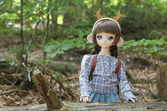 A day in the woods (Ninotpetrificat) Tags: mdd dd dollfiedream dollfie volks ddh10 doll muñeca japandoll japantoy asiandoll cute kawaii hobby handmade woods wald bosque toys juguete puppe