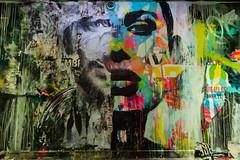 Le visage par JM Robert à #rehab2 - @ciup_fr (tangi_bertin) Tags: maisondesélèvesingénieursartsetmétiers rehab2 artsetmétiers cité citéinternationaleuniversitairedeparis graffiti grafitty jmrobert jmrobertart rehab streetart streetartparis