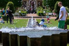 Water drops (Anders Bromell) Tags: fs170611 vattendroppar fotosondag