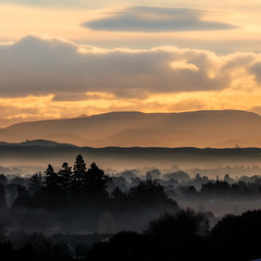 Golden View from Busby Hill (Jos Buurmans) Tags: evening gold golden goldenhour hastings havelocknorth hawkesbay hills landscape mist nature newzealand northisland rollinghills trees valley nz