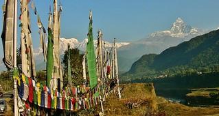 NEPAL, Pokhara, Gebetsfahnen vor herrlicher Kulisse, 16215/8518