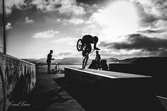 bmx-skatepark-cimadevilla-elogio-cerro-santa-catalina-gijon-asturias-deporte-sport-bowl-fly-air-freestyle-007 (coudlain) Tags: bmx deporte sport gijon asturias skatepark skateparkgijon cimadevilla elogio cerrosantacatalina freestyle bowl fly air truco bunnyhop barspin manual superman bicycle motocross bicicleta extremo xtreme street