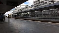 UDD 466 (Tiago Alves Miranda) Tags: caminhodeferro railways cp comboiosdeportugal udd450 0466 comboio train regional entrecampos etc linhadecintura lisboa portugal tiagoalvesmiranda