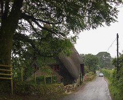 2017 Trip to England (FranzVenhaus) Tags: churches countryside atlantic ocean ruins museums holidays history city moor monuments cathedrals castles rocks padstow cornwall unitedkingdom gbr