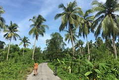 Myanmar, Ayeyarwady Region, Pyapon District, Dedaye Township, Dar Ma Thein Village Tract (Die Welt, wie ich sie vorfand) Tags: myanmar burma bicycle cycling ayeyarwadyregion ayeyarwady irrawaddy delta pyapondistrict pyapon dedayetownship dedaye kyonthin darmathein