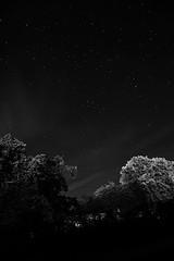 Himmel volle Sterne (Hussein.Almohamad) Tags: himmel schwarzweis nacht eutin ostholstein deutschland sterne