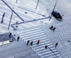 Real Toys (CoolMcFlash) Tags: street tiltshift focus effect aerial view highangleview crosswalk car urban city citylife vienna austria canon eos 60d tamron b008 18270 strase fokus effekt oben zebrastreifen auto stadt städtisch wien österreich fotografie photography toy spielzeug red rot