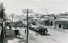 Bullock team in street at Broken Hill, N.S.W. - very early 1900s (Aussie~mobs) Tags: vintage australia newsouthwales niemannbros plumbers brokenhill bullockteam streetscape shops businesses telegraphpole srgray woodandson
