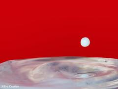 Gota de leche - Milk drop (Eva Ceprián) Tags: macro macrofotografía macrophotography drop gota fondorojo redbackground agua water milkdrop milk leche gotadeleche nikond3100 tamron18270mmf3563diiivcpzd evaceprián highspeedphotography splash