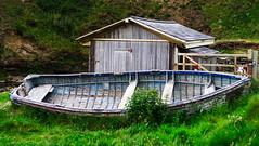 Abandoned Fishing Boat (mpb_17) Tags: