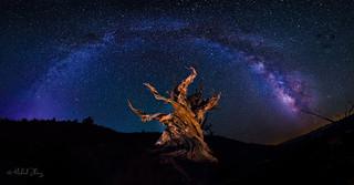 Eternity: Between Heaven and Earth